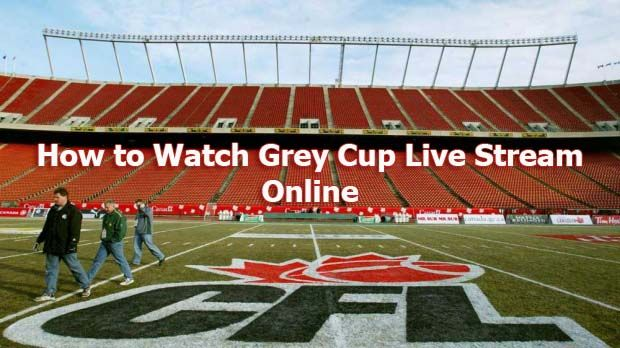 How To Watch Cfl Grey Cup 2019 Live Stream Online